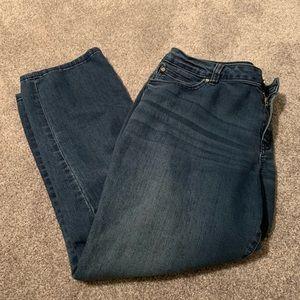 Jennifer Lopez size 14 jeans